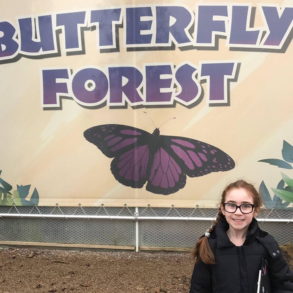 Rebecca Bailey - Butterfly Whisperer